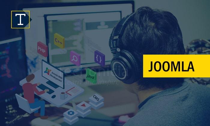 Joomla (CMS) Training in Satnali (MGRH)