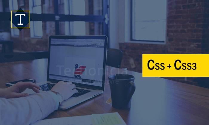 Css & Css3 Training Institute